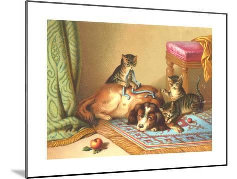 Ornery Kittens with Resting Dog--Mounted Art Print