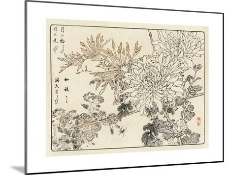 Stylized Chrysanthemums with Spider and Web--Mounted Art Print