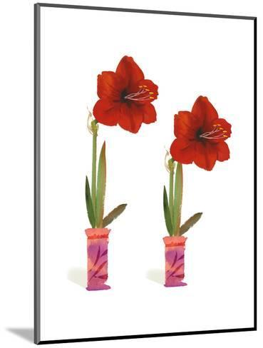 Watercolor of Two Amaryllis Plants in Vases--Mounted Art Print