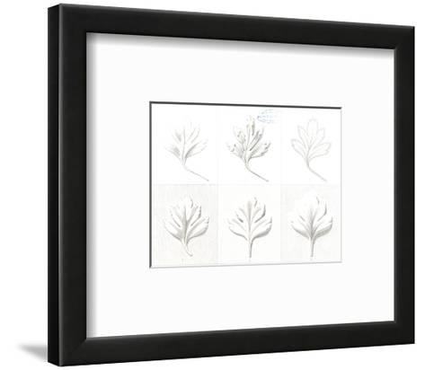 Stylized, Leafy Variations Diagram--Framed Art Print