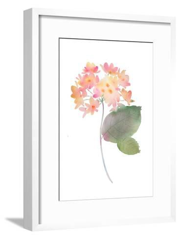 Cluster of Pink Watercolor Flowers--Framed Art Print