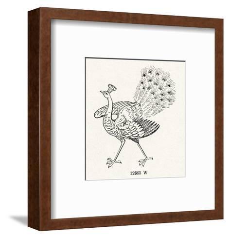 Peacock Line Illustration--Framed Art Print