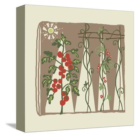 Garden with Tomato Plant and Trellis with Flowering Vines--Stretched Canvas Print