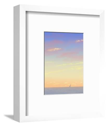 Sailboat Out on the Sea with Sunset Colored Sky--Framed Art Print