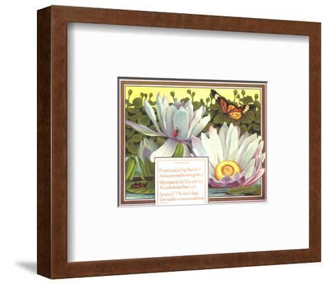 Insects with Water Lilies--Framed Art Print