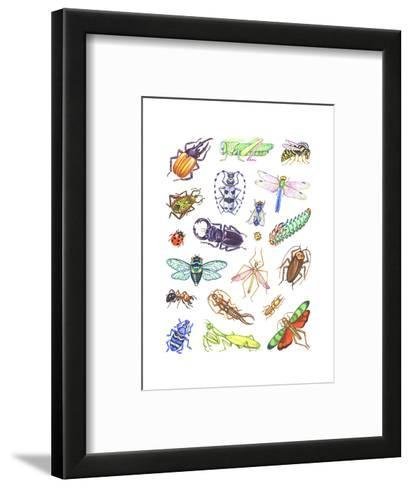 Array of Insects, Including Beetles, Grasshoppers, and Caterpillars--Framed Art Print