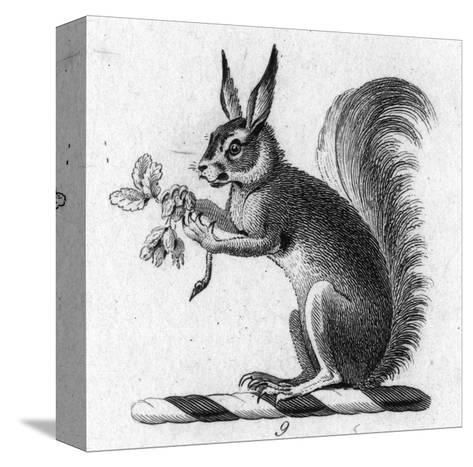Stylized Squirrel Holding Leaves--Stretched Canvas Print