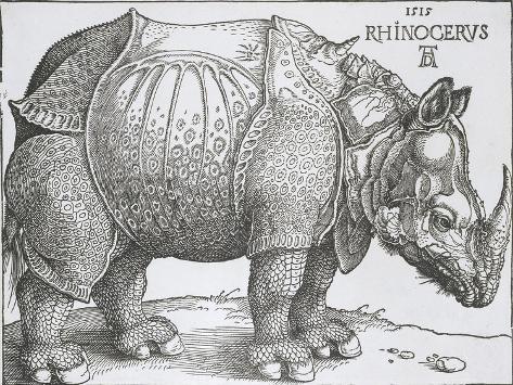 Rhinoceros, 1515-Albrecht Durer-Stretched Canvas Print