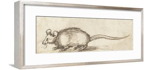 Mouse, C. 1480-1520-Albrecht Durer-Framed Art Print
