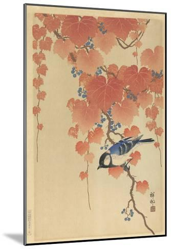Great Tit on Paulownia Branch, 1925-36-Ohara Koson-Mounted Giclee Print