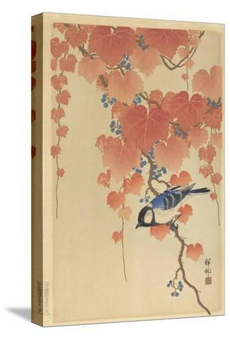 Great Tit on Paulownia Branch, 1925-36-Ohara Koson-Stretched Canvas Print