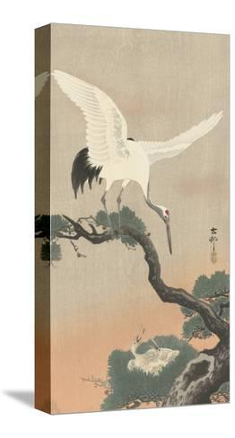 Japanese Crane on Pine Branch, 1900-30-Ohara Koson-Stretched Canvas Print