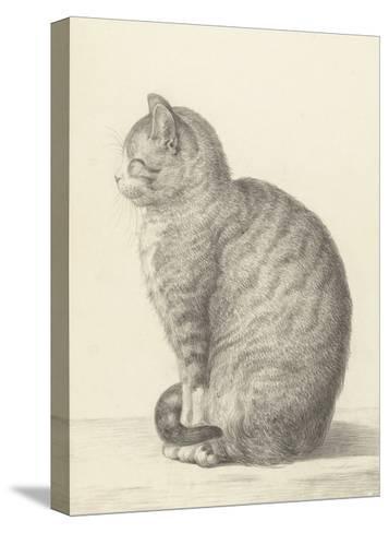Sitting Cat, Facing Left, 1825-Jean Bernard-Stretched Canvas Print