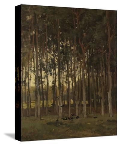 View in the Woods, C. 1870-1904-Theophile de Bock-Stretched Canvas Print