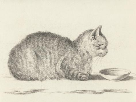 Lying Cat, Facing Right, by a Dish, 1812-Jean Bernard-Stretched Canvas Print