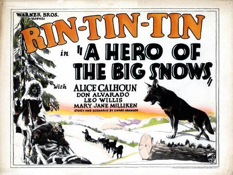 A Hero of the Big Snows, Rin Tin Tin, 1926--Stretched Canvas Print