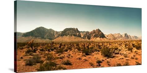 View of the Red Rock Canyon National Conservation Area, Near Las Vegas, Clark County, Nevada, USA--Stretched Canvas Print