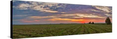 Clouds over Landscape at Sunrise, Prairie Ridge State Natural Area, Marion County, Illinois, USA--Stretched Canvas Print