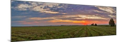 Clouds over Landscape at Sunrise, Prairie Ridge State Natural Area, Marion County, Illinois, USA--Mounted Photographic Print