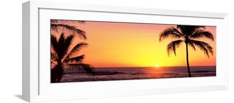 Palm Trees at the Coast at Sunset, Waikoloa, Hawaii County, Hawaii, USA--Framed Art Print