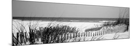 Fence on the Beach, Bon Secour National Wildlife Refuge, Gulf of Mexico, Bon Secour--Mounted Photographic Print