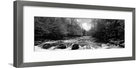 River Flowing Through Rocks in a Forest, Little Pigeon River--Framed Art Print