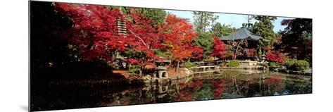 Seiryo-Ji Temple in Autumn, Ukyo-Ku, Kyoto City, Kyoto Prefecture, Japan--Mounted Photographic Print