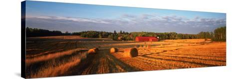 Hay Bales in a Field, Flen, Sodermanland County, Sweden--Stretched Canvas Print
