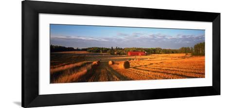Hay Bales in a Field, Flen, Sodermanland County, Sweden--Framed Art Print