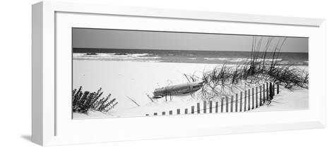 Fence on the Beach, Alabama, Gulf of Mexico, USA--Framed Art Print