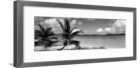 Salomon Beach Us Virgin Islands--Framed Art Print