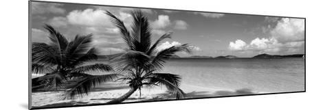 Salomon Beach Us Virgin Islands--Mounted Photographic Print