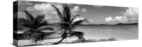 Salomon Beach Us Virgin Islands--Stretched Canvas Print