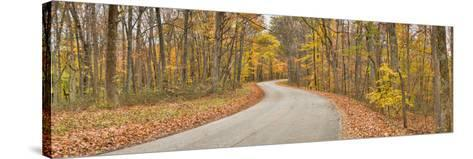 Road Passing Through a Forest, Brown County State Park, Brown County, Indiana, USA--Stretched Canvas Print