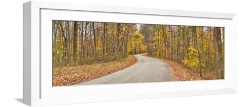 Road Passing Through a Forest, Brown County State Park, Brown County, Indiana, USA--Framed Art Print