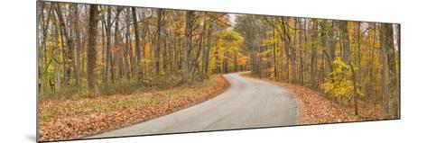 Road Passing Through a Forest, Brown County State Park, Brown County, Indiana, USA--Mounted Photographic Print