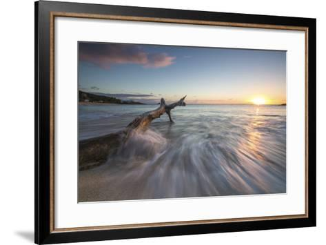 Waves on a Tree Trunk on the Beach Framed by the Caribbean Sunset, Hawksbill Bay, Antigua-Roberto Moiola-Framed Art Print