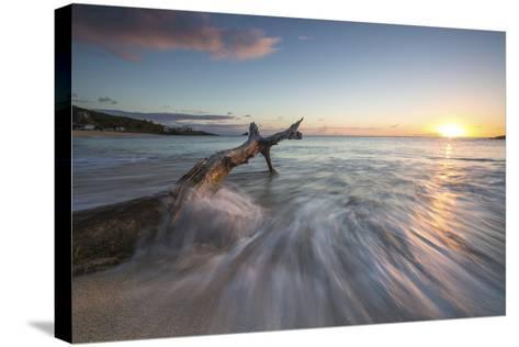 Waves on a Tree Trunk on the Beach Framed by the Caribbean Sunset, Hawksbill Bay, Antigua-Roberto Moiola-Stretched Canvas Print
