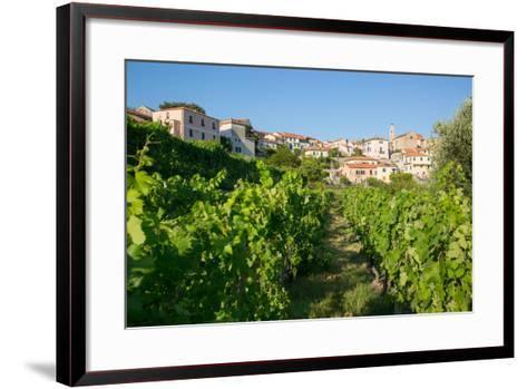 View of Diano Marina from Diano Castello, Imperia, Liguria, Italy, Europe-Frank Fell-Framed Art Print