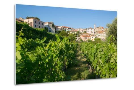 View of Diano Marina from Diano Castello, Imperia, Liguria, Italy, Europe-Frank Fell-Metal Print