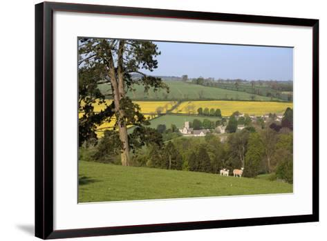 Oilseed Rape Fields and Sheep Above Cotswold Village, Guiting Power, Cotswolds-Stuart Black-Framed Art Print