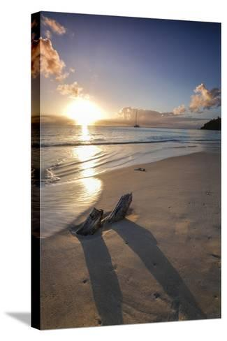 The Caribbean Sunset Frames the Remains of Tree Trunks on Ffryes Beach, Antigua-Roberto Moiola-Stretched Canvas Print