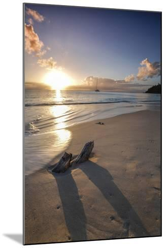 The Caribbean Sunset Frames the Remains of Tree Trunks on Ffryes Beach, Antigua-Roberto Moiola-Mounted Photographic Print