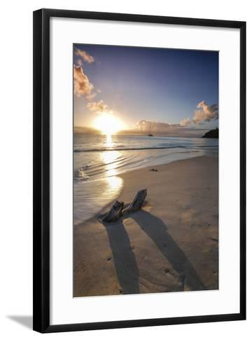 The Caribbean Sunset Frames the Remains of Tree Trunks on Ffryes Beach, Antigua-Roberto Moiola-Framed Art Print