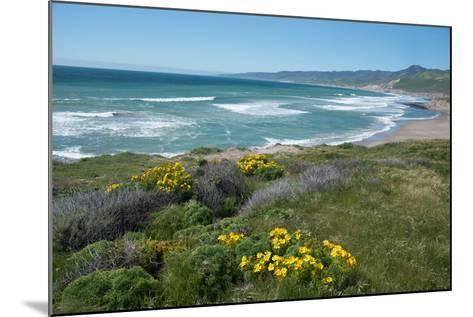 View of Jalama Beach County Park, Near Lompoc, California, United States of America, North America-Ethel Davies-Mounted Photographic Print