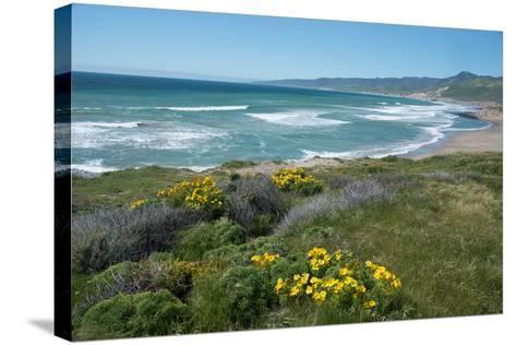 View of Jalama Beach County Park, Near Lompoc, California, United States of America, North America-Ethel Davies-Stretched Canvas Print