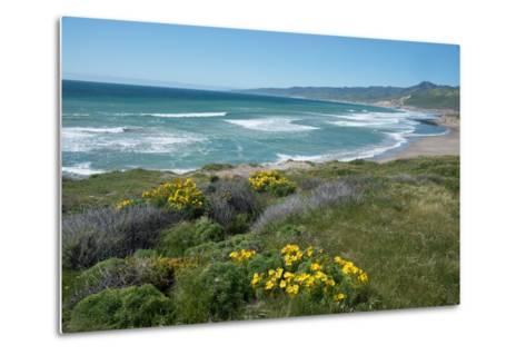 View of Jalama Beach County Park, Near Lompoc, California, United States of America, North America-Ethel Davies-Metal Print