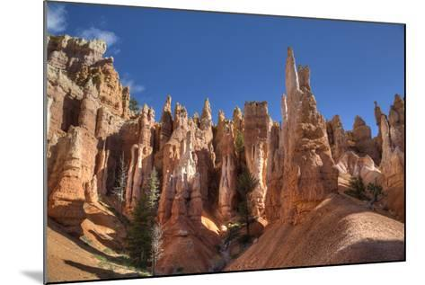 Hoodoos, on the Queens Garden Trail, Bryce Canyon National Park, Utah, United States of America-Richard Maschmeyer-Mounted Photographic Print