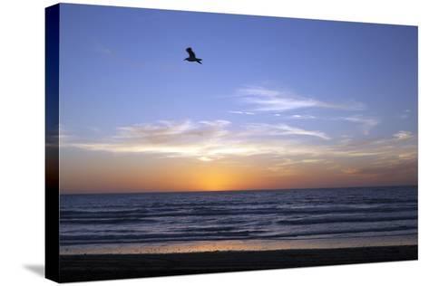 Sunset over La Jolla Coast, California, United States of America, North America-Thomas L-Stretched Canvas Print