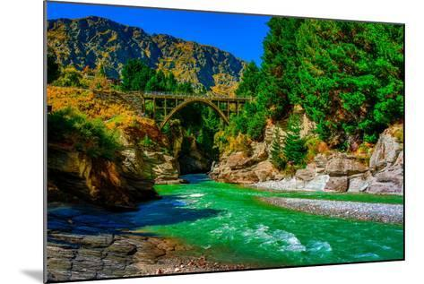 Shotover River, Queenstown, South Island, New Zealand, Pacific-Laura Grier-Mounted Photographic Print
